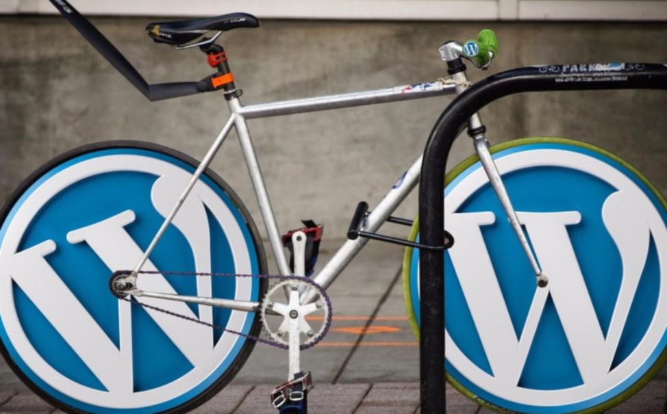 Read more about the article WordPress Website Design